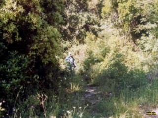 Wanderung durch den unberührten Wald nach Karakalou